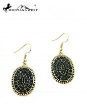 ER17031501(GDBK)-MW-wholesale-montana-west-earring-accessory-crystal-plate(0).jpg